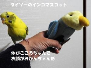 ダイソーのインコマスコット