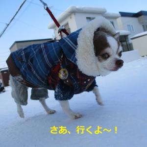 雪中行軍、わっせ!わっせ!