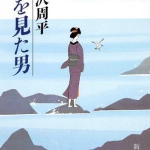藤沢周平作「龍を見た男」を読みました。