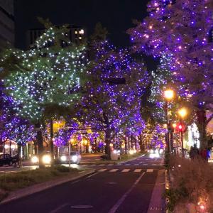 大阪旅行5 クリスマスイルミネーション