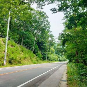 栃木‐会津‐新潟ルートで北海道航路