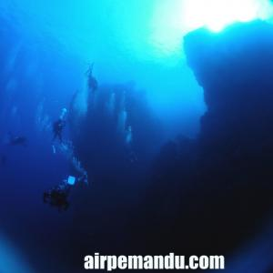 10月4日久しぶりの辺戸岬ダイビング