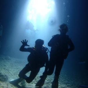 11月22日ジンベエから青の洞窟まで♪