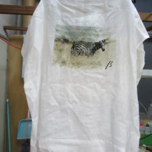 百貨店商品カットソー(ファイブフォックス製)衿汚れ しみ抜き 綿素材