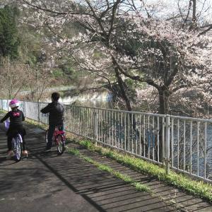 孫娘とサイクリング