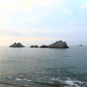 (2020.7.19)の投げ釣り『今季初のN海岸で投げキッス』