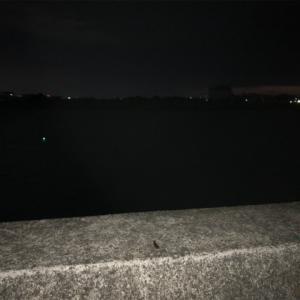 2020/02/22 水軒鉄鋼団地(和歌山 和歌山市)am4:00~am6:00