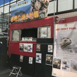 【12/29新規出展者紹介】日本のわんぱく小僧 さん