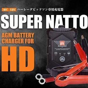 そろそろ冬対策、ハーレー用のバッテリー充電器を購入
