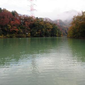 津久井湖・沼本ボート 11月25日