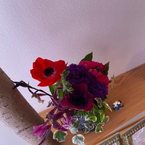 お花を初めてもらった日を覚えていますか?②