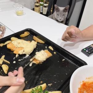 【コストコ】フィッシュ&チップス