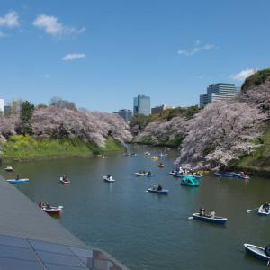 4月の千鳥ヶ淵:千鳥ヶ淵遊歩道を歩いて九段坂上・靖国神社前へ PART2