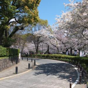 4月の千鳥ヶ淵:千鳥ヶ淵遊歩道を歩いて九段坂上・靖国神社前へ PART1