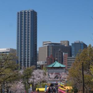 4月の上野公園:上野公園山下から桜並木道を通って噴水広場へ PART2