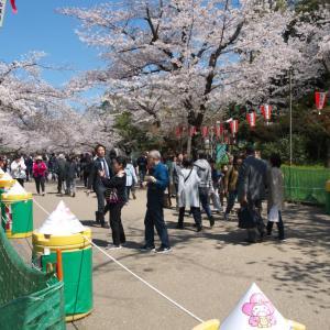 4月の上野公園:上野精養軒本店と上野大仏跡地の周辺 PART1