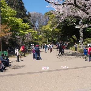 4月の上野公園:大混雑の噴水広場と上野動物園表門の周辺 PART1