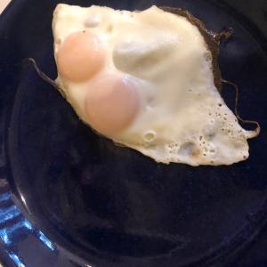 おめでたい日に双子の卵。