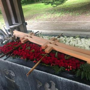 帯広神社のお花