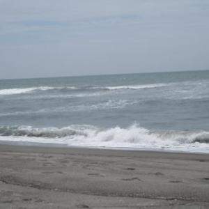 海が荒れた後はー?