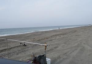 磐田の浜はパラダイス(場所により?)