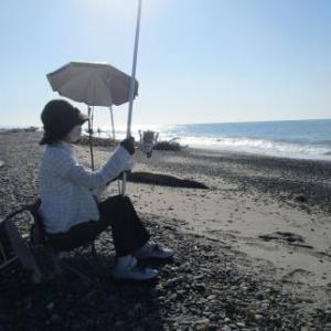 鮫島海岸を楽しく?