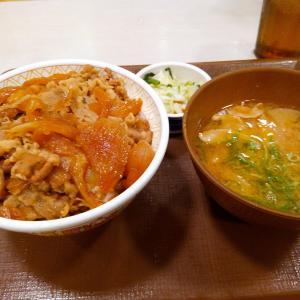 関東に大型台風が接近中らしいので牛丼を食べにゆくことにした。