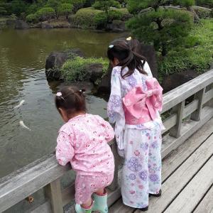 2日連続、同じ公園の七夕祭りへ行く(鯉に餌)