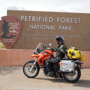 """Get your kicks on """"Route 66"""" Petrified NP"""