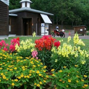 トムテ文化の杜キャンプ場