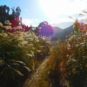比叡山登山は コレで お・わ・り (^^♪