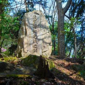 """実は、昨日は""""大文字山""""へ 登ったんだよ!ちょっと、、迷いそうになって。。。""""(-""""""""-)"""""""