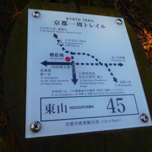 """""""京都一周トレイル""""に沿って、、大文字山 でも 道をソレていたんだ。。。""""(-""""""""-)"""""""