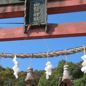 白髭神社(しらひげじんじゃ)さん迄を 凄く遠く感じたな、、、湖国らしく沖島も見えるよ!湖西の景色