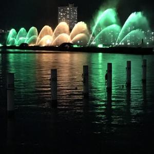 琵琶湖ホテルより噴水⛲