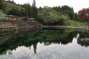 丸池湧水:透明すぎる湧水池