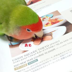 鳥たい?トリたい!( *´艸`)
