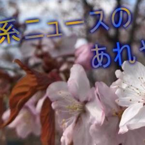 東京都も緊急事態宣言を要請へ 早ければ22日にも