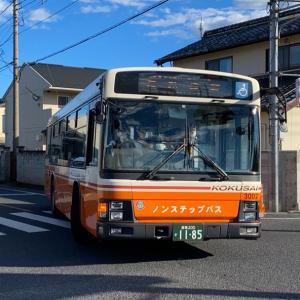 【国際十王交通】東武バスカラー