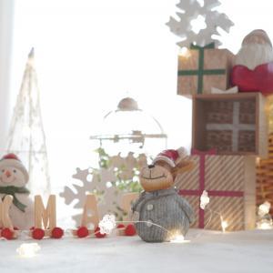 11月25日・12月2日クリスマス撮影会だよ!