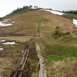 雨降りの会津駒ヶ岳です!