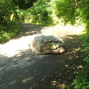 林道の落石は撤去されました