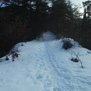 大倉岳 旧鳥越スキー場跡スキー滑降