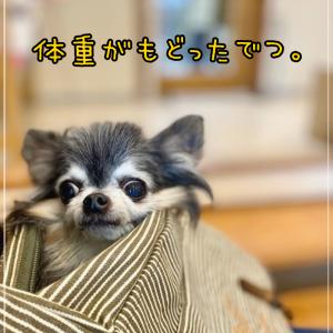 救世主、チューブダイエット・キドナ (☆Д☆)