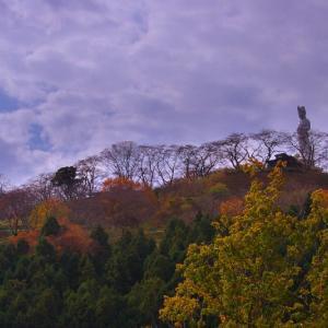 秋色を生けるーⅤ