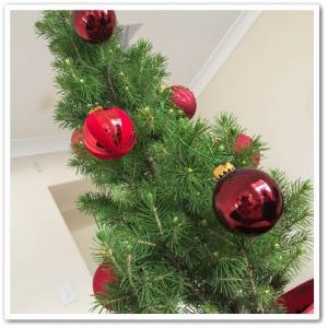 ☆ なんちゃってな生木のクリスマスツリー ☆