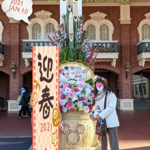 Disneyland♡行って来ました(◍•ᴗ•◍) ②