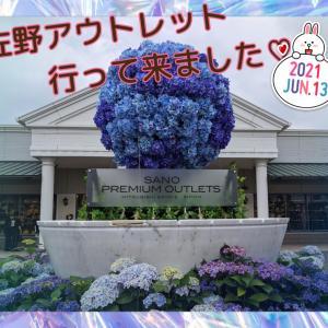 父の日♡に向けてのショッピング。◕‿◕。&紫陽花