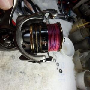 紀州釣り使用!12ルヴィアス2506オーバーホール!