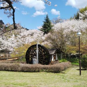 ド田舎から里山の春